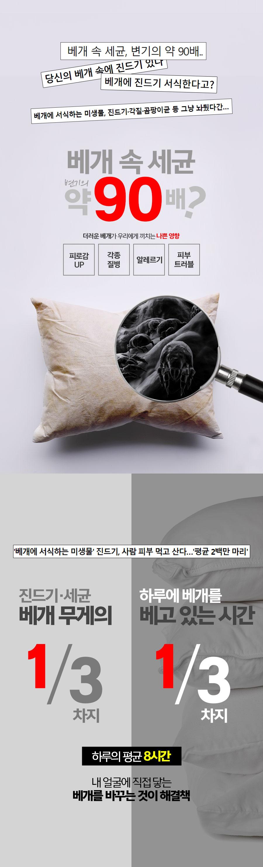 pillow_01.jpg